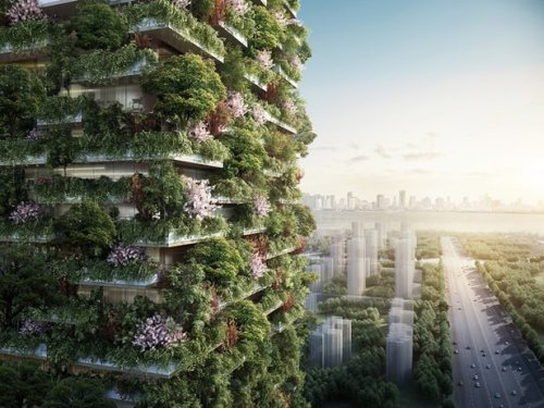 Vertical Forest #2